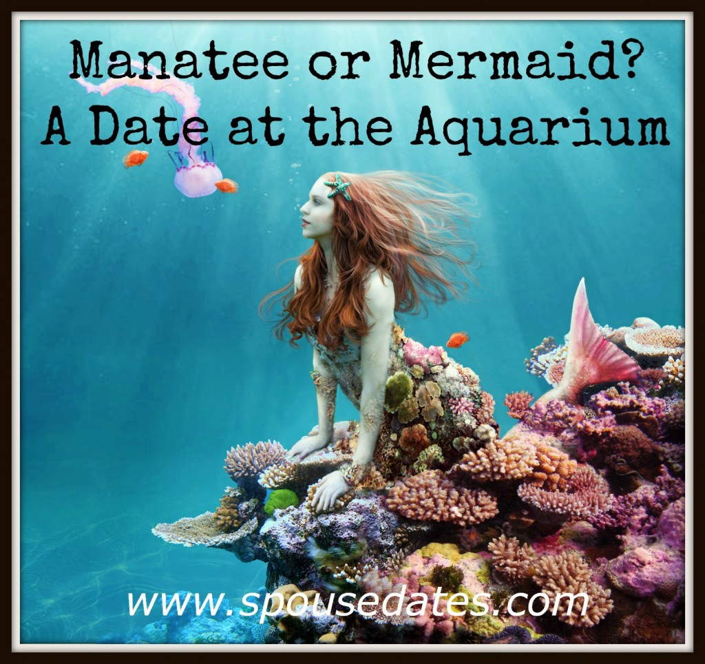 Manatee or Mermaid:  A Date at the Aquarium