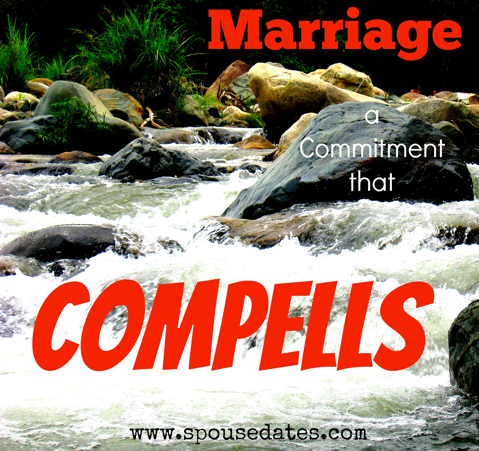 Marriage: A Commitment that Compells